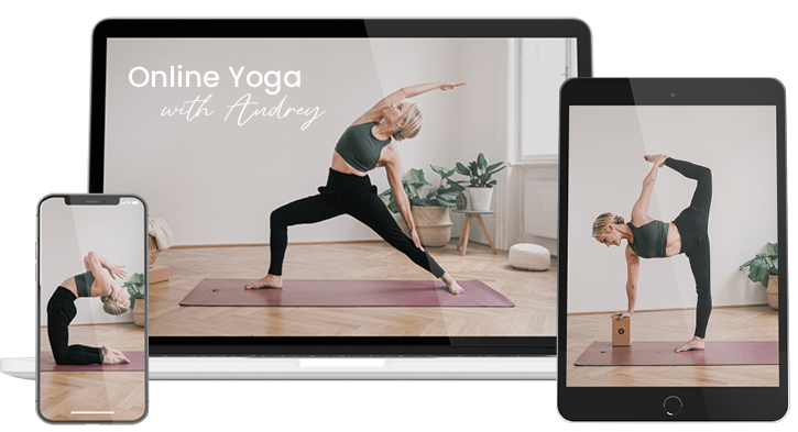 justyogait devices